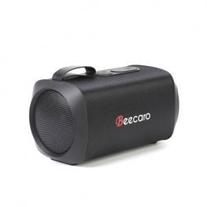 Speaker beecaro GF601